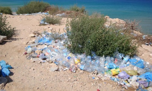 Container Deposit Legislation South Australia